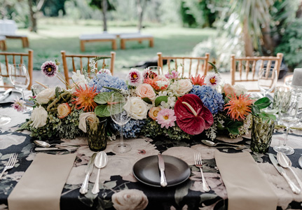 Knysna Forest Weddings, Event and Function Venue in the forest. Forest weddings in the Garden Route - forest function event, forest wedding venue
